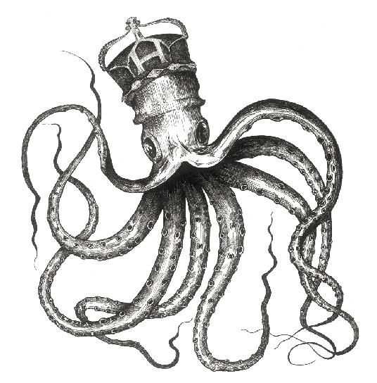 Octopus screen shot.png