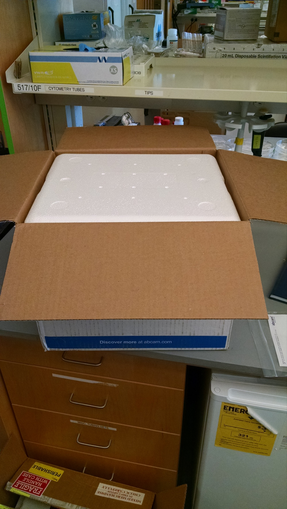 A very large EPS cooler arrived packed into a perfect sized box