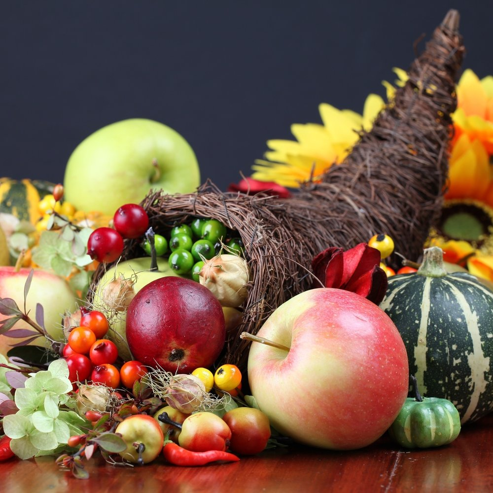 Happy Thanksgiving to labconscious scientists!