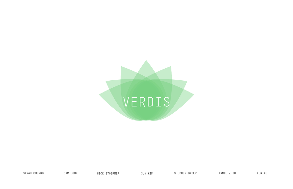 VERDIS Documentation_页面_01.png