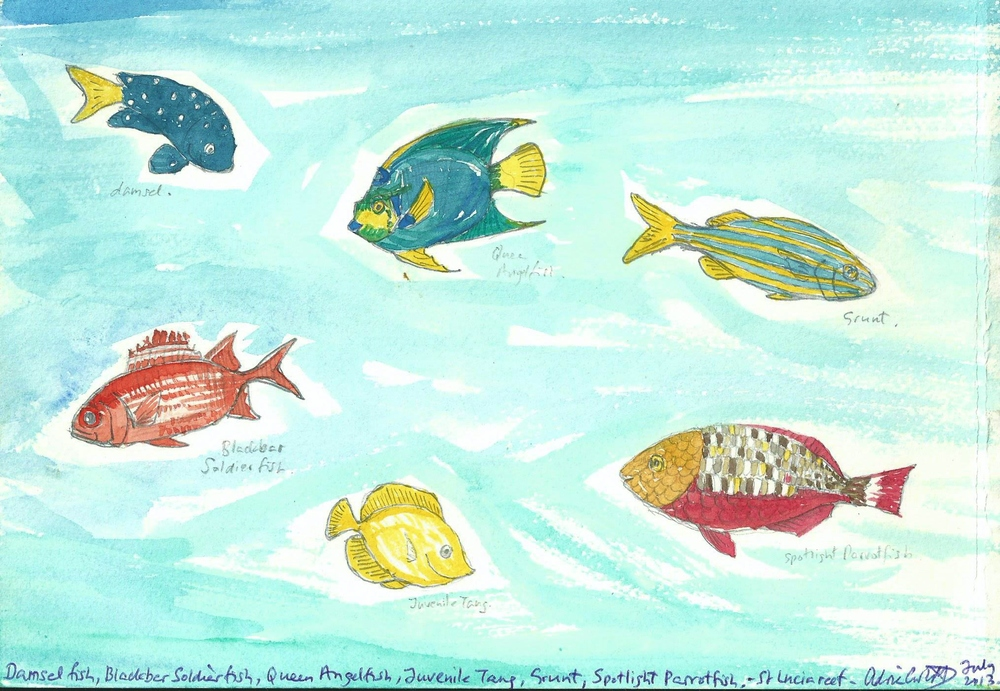 Poem book St. Lucia reef fish 1 watercolor.jpg
