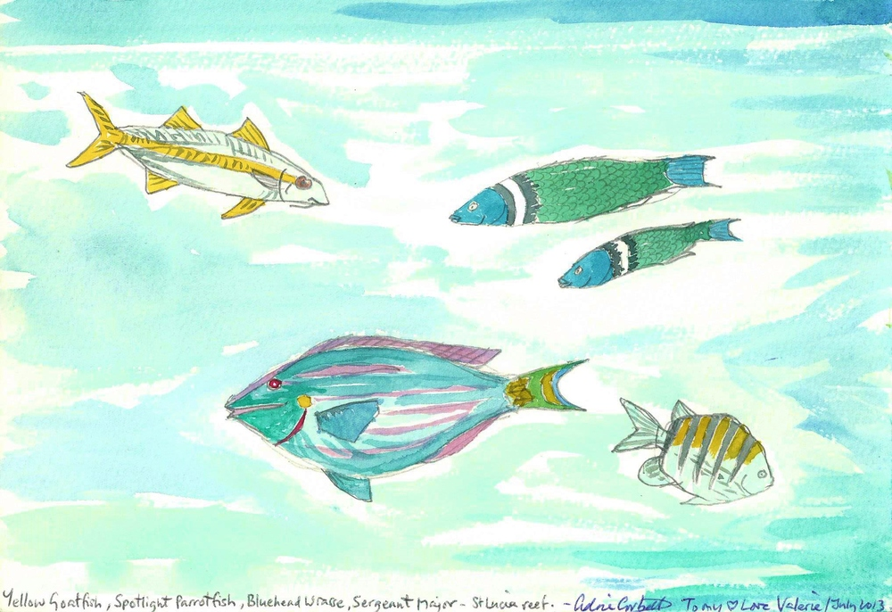 poem book tropical fish 2 watercolor.jpg