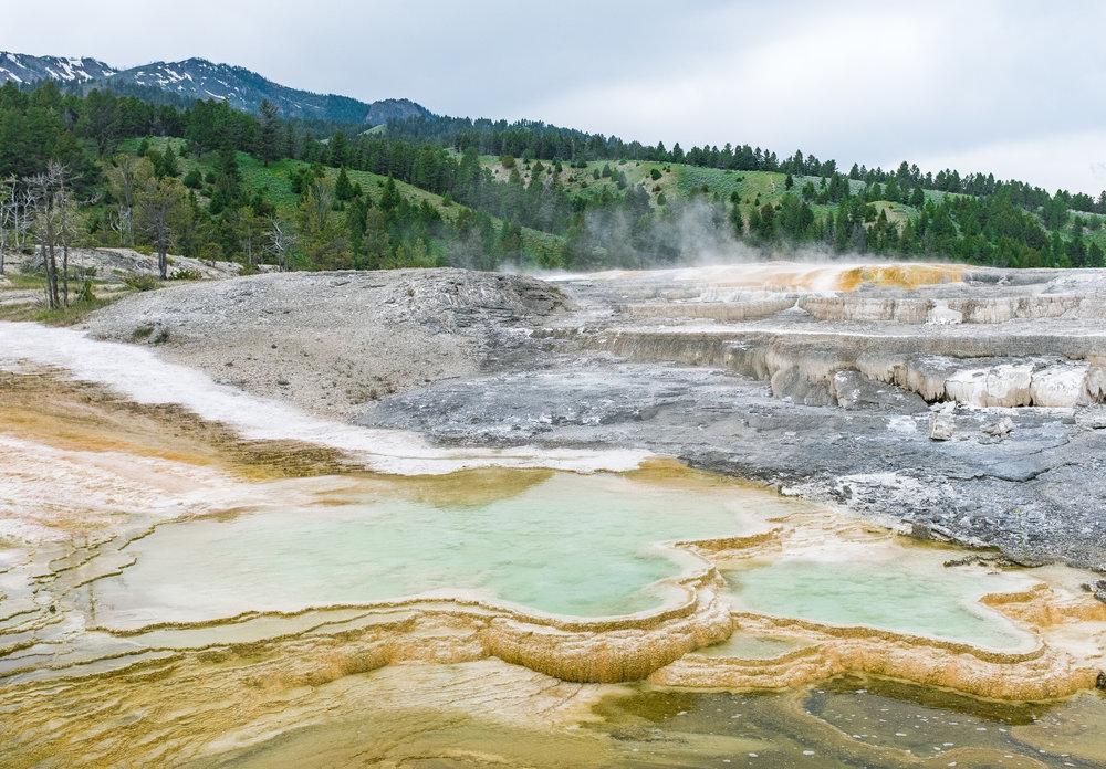 Yellowstone Trip_35.jpg