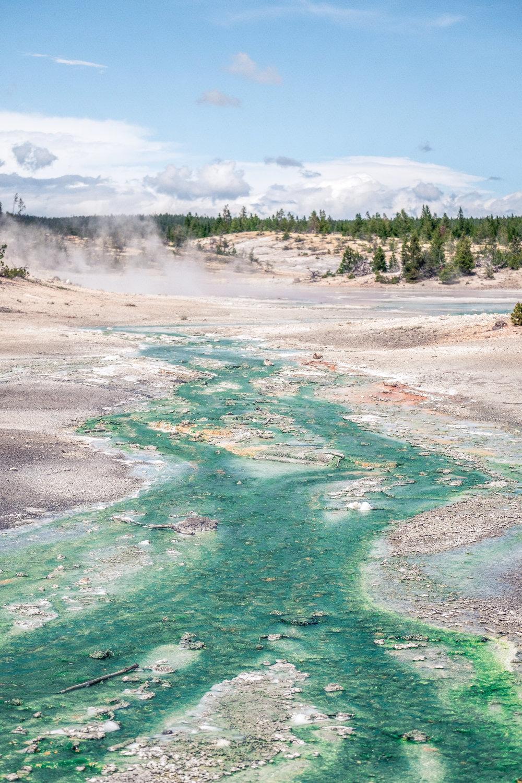 Yellowstone Trip_44.jpg