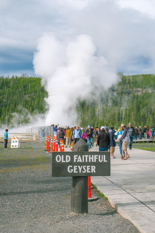 Yellowstone Trip_52.jpg