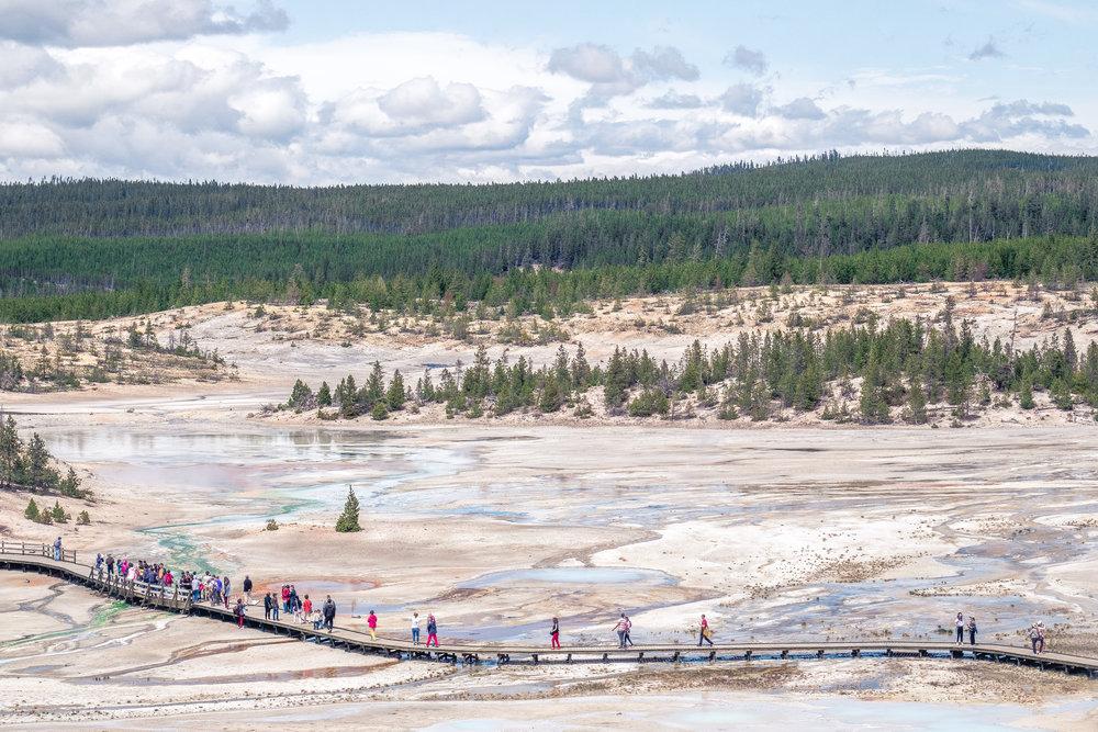 Yellowstone Trip_41.jpg
