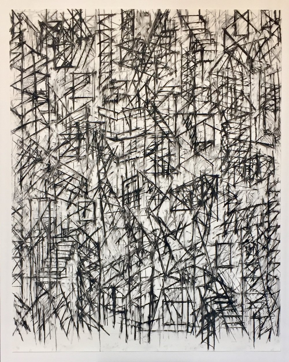 Amazonas, -4.2248, -64.2160,  2017  Charcoal and pastel on paper  53H x 42W inches unframed  58H x 47W inches framed