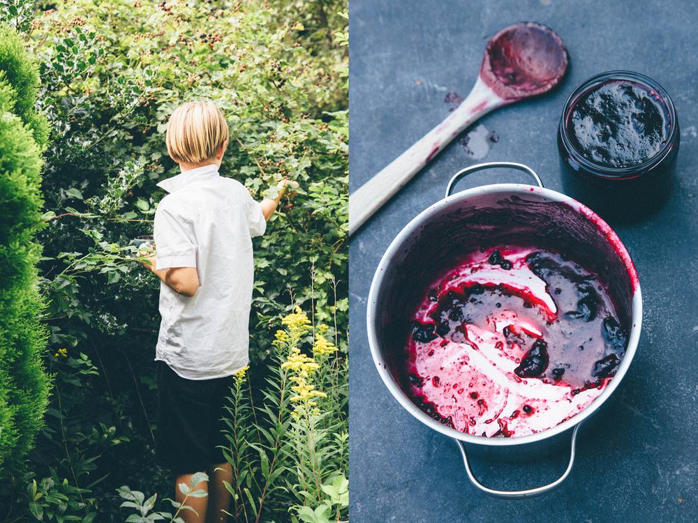 """Everybody loves jam, Evan helps picking blackberries for""""Purple Haze."""