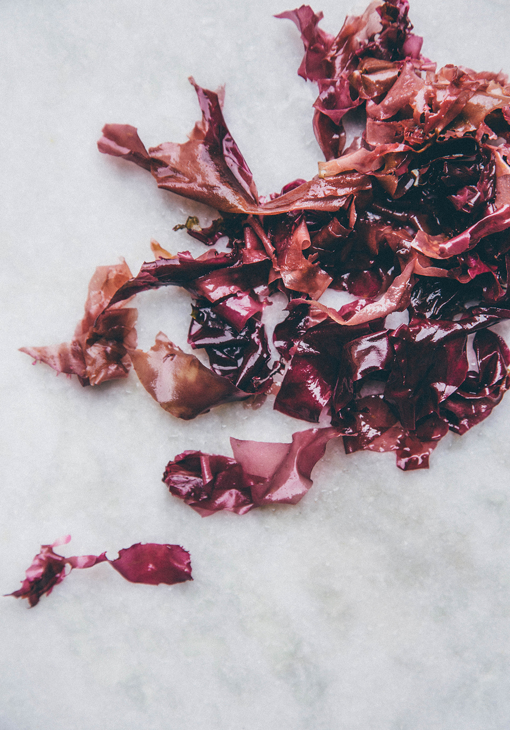 The highly nutritious sea weed Dulse has been enjoyed around Ireland and the coast of northern Europe as a food for at least hundreds of years back in time. To much of a good things is never good though, and balance is key. Common health and safety advice promotes a maximum of 5 grams of sea weed per day and person.