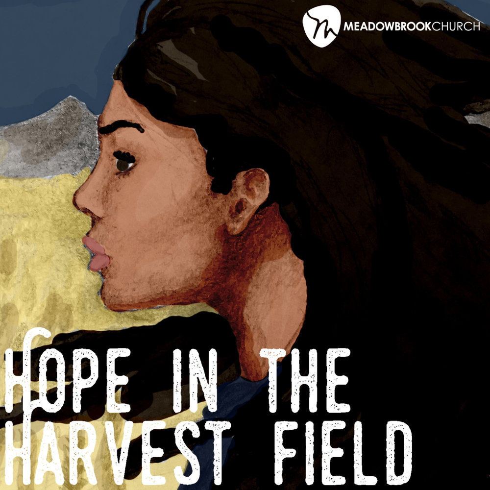 Dec 3-24, 2017   The book of Ruth reminds us that no matter what hardship and darkness life brings our way, God is present and at work to nurture hope in our hearts for a brighter and better future.
