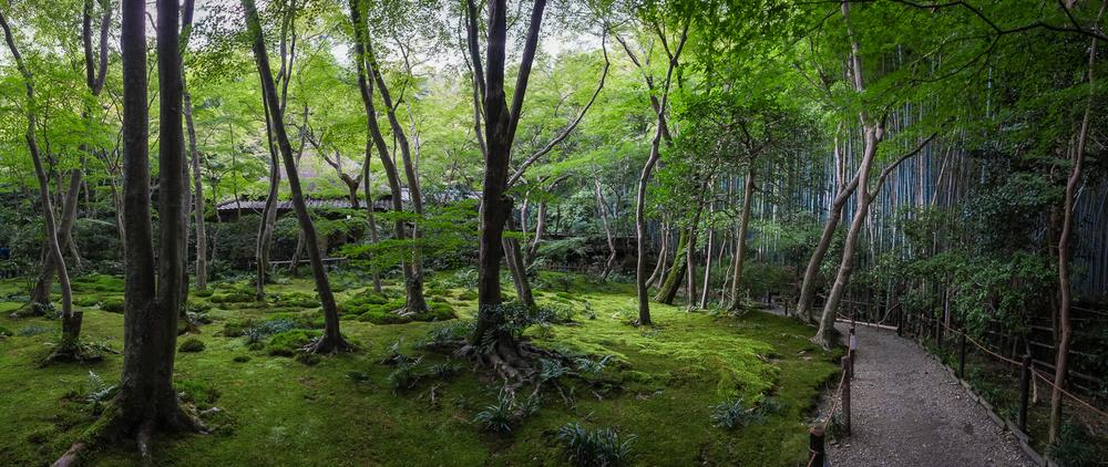 Japan14-34.jpg