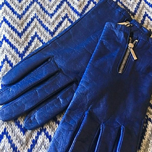 Blue Gloves.jpg