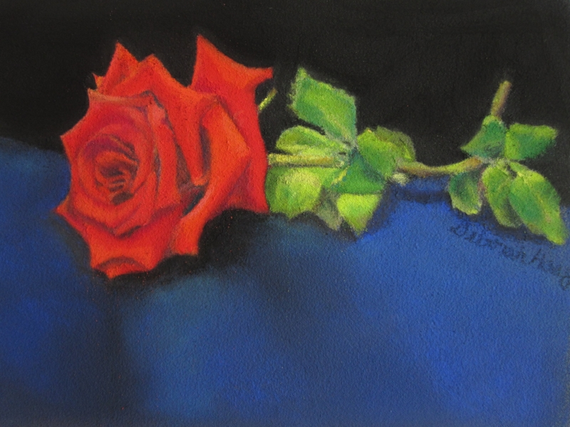 Pastel, Doris' Rose, Private Collection
