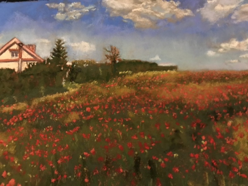 Pastel, Normandy Poppies