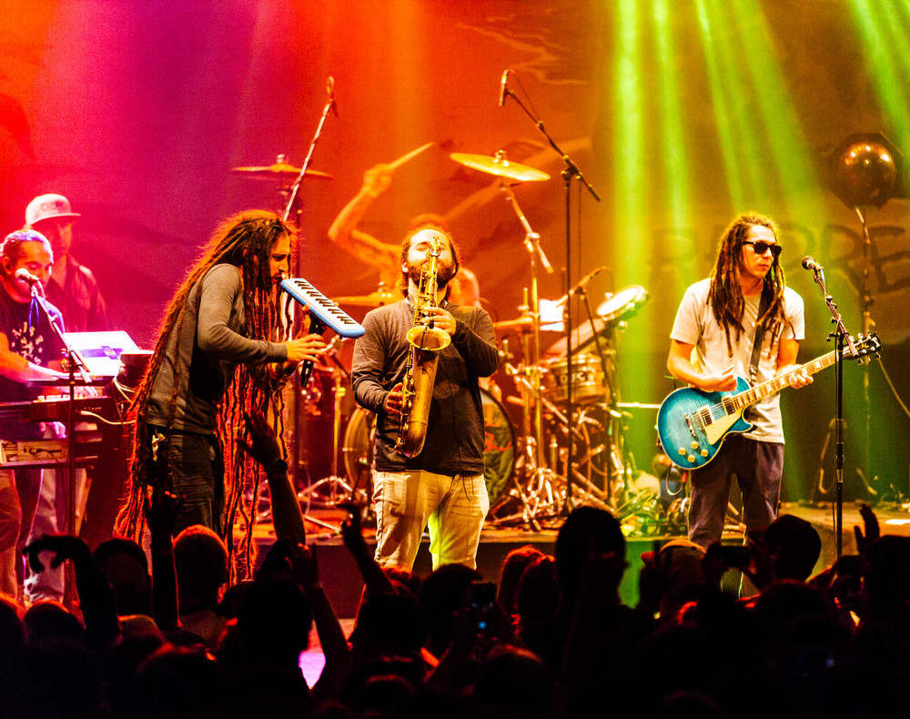tribal_seeds-3.jpg