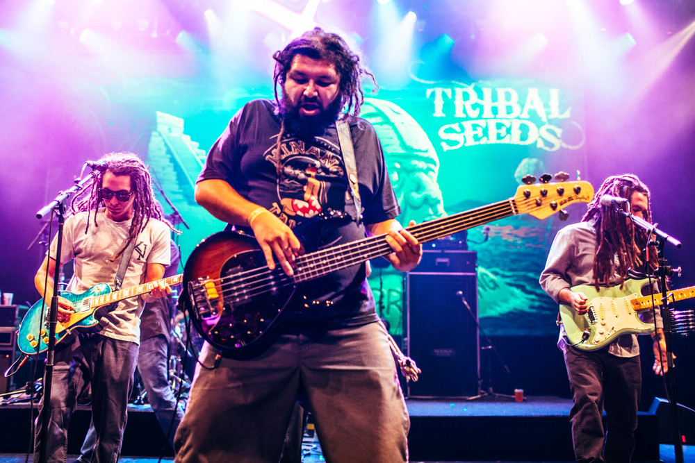 tribal_seeds-52.jpg