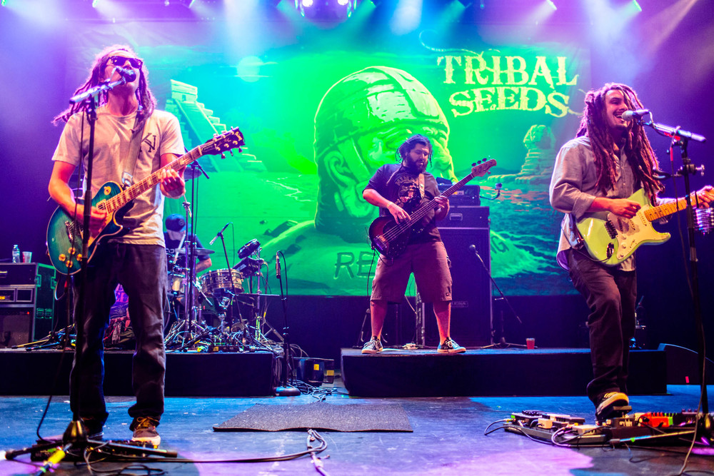 tribal_seeds-49.jpg