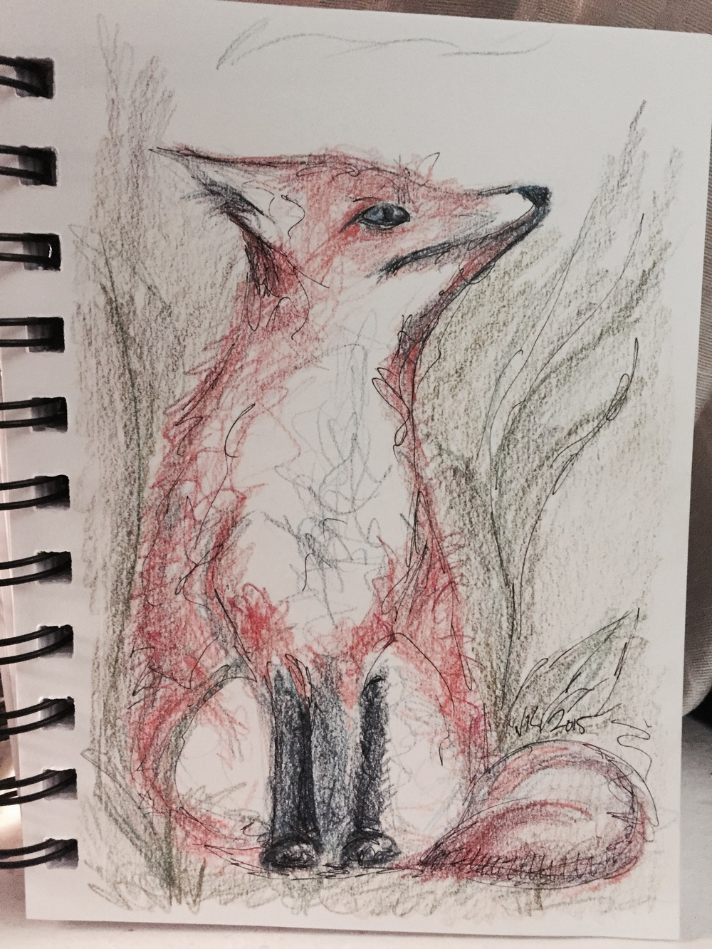 FoxColour.jpg