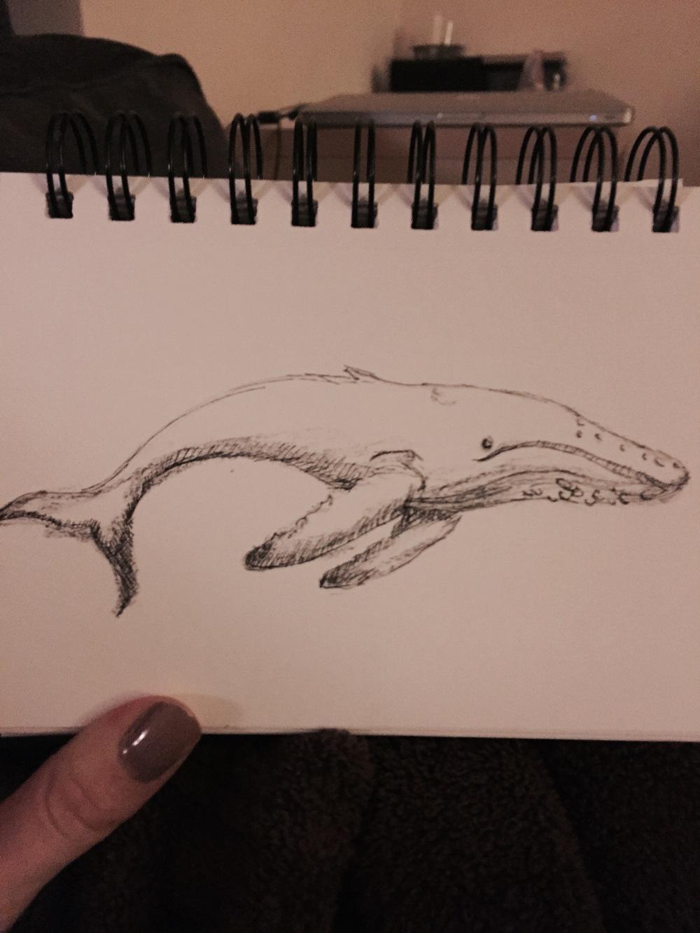 WhaleBW.jpg