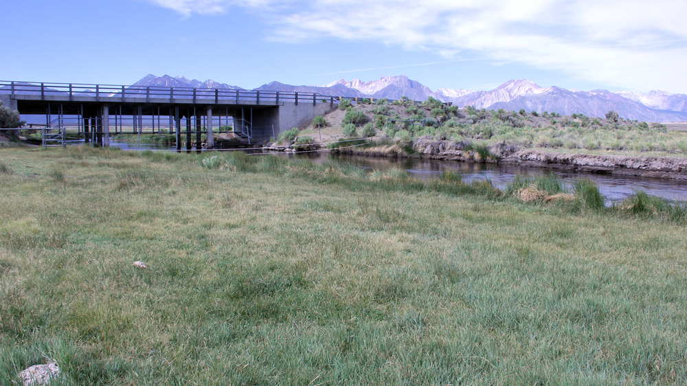 UPPER_OWENS_RIVER.jpg