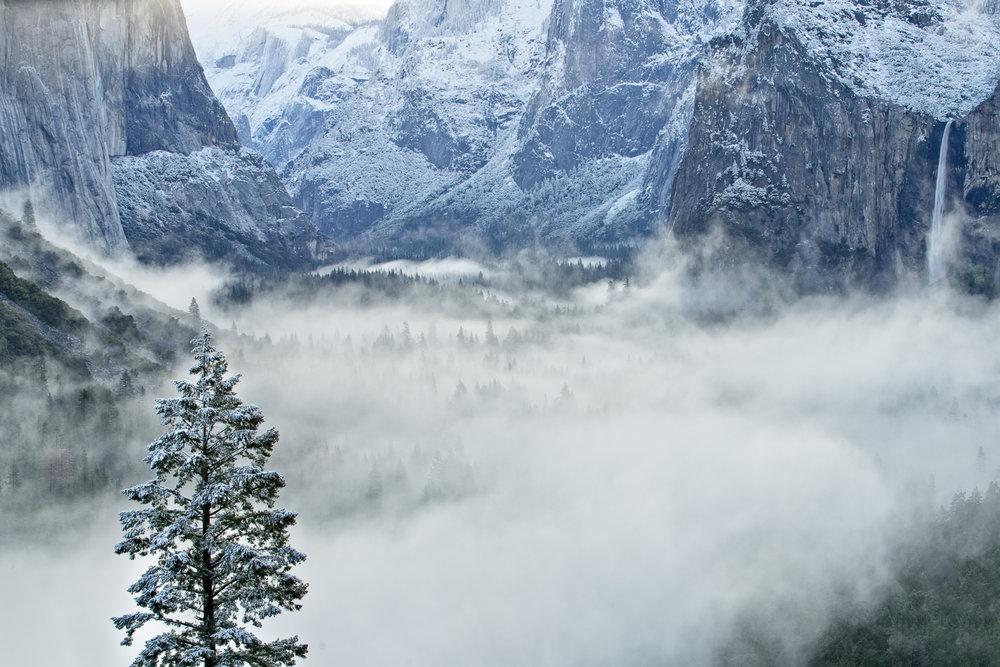 20140426_Yosemite_5945-Edit-Edit.jpg