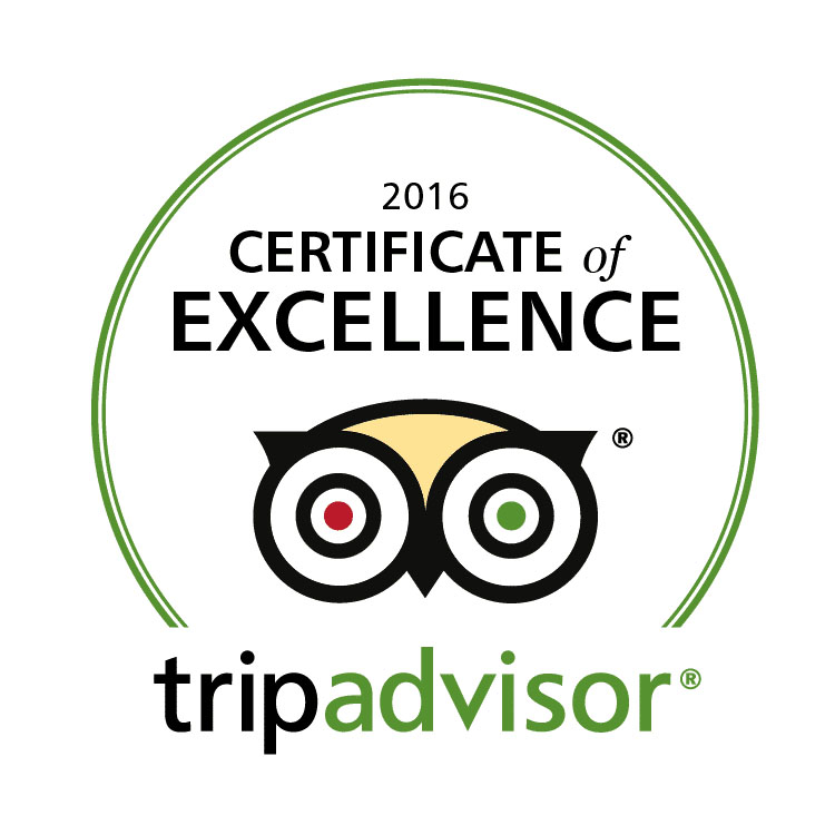 TripAdvisor Certificate of Excellence Award1 RESIZED.jpg