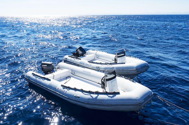 RED SEA20 Blue Force Tenders BF3 RESIZED.jpg