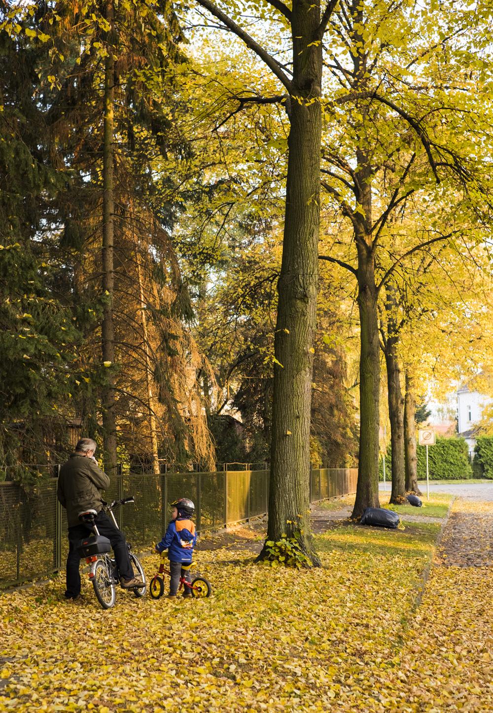 Berlin in the Fall