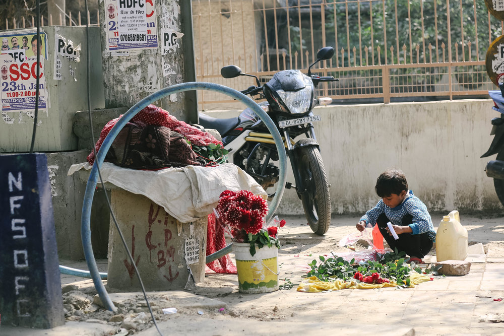 Valentines Day New Dheli, India
