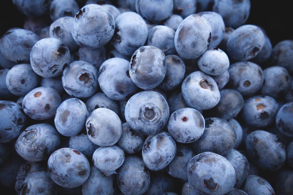 blueberries-690072_960_720.jpg