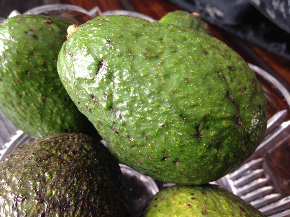 avocado4.JPG