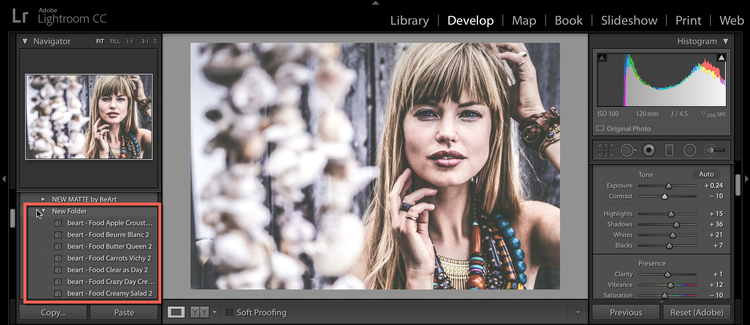 import+lightroom presets into lightroom