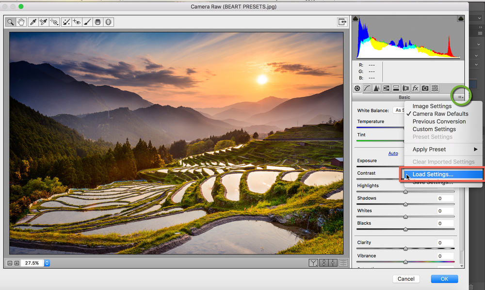 How to Install Camera RAW Presets