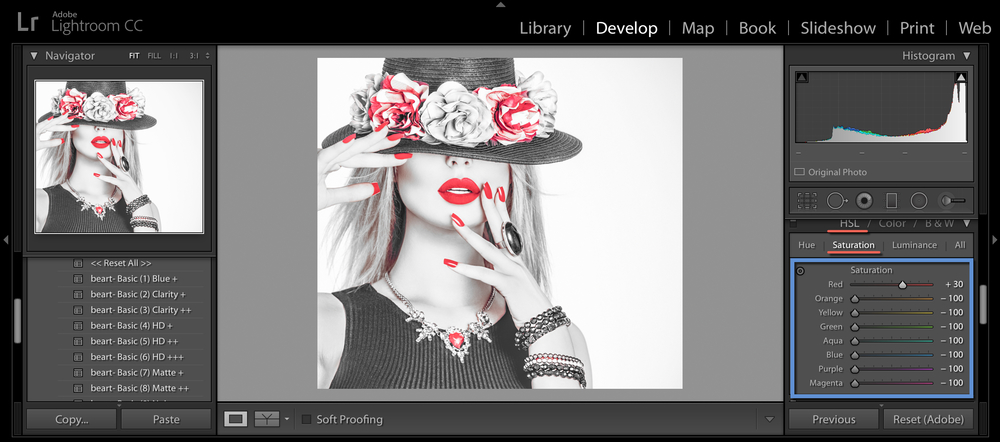 choose HSL in lightroom application