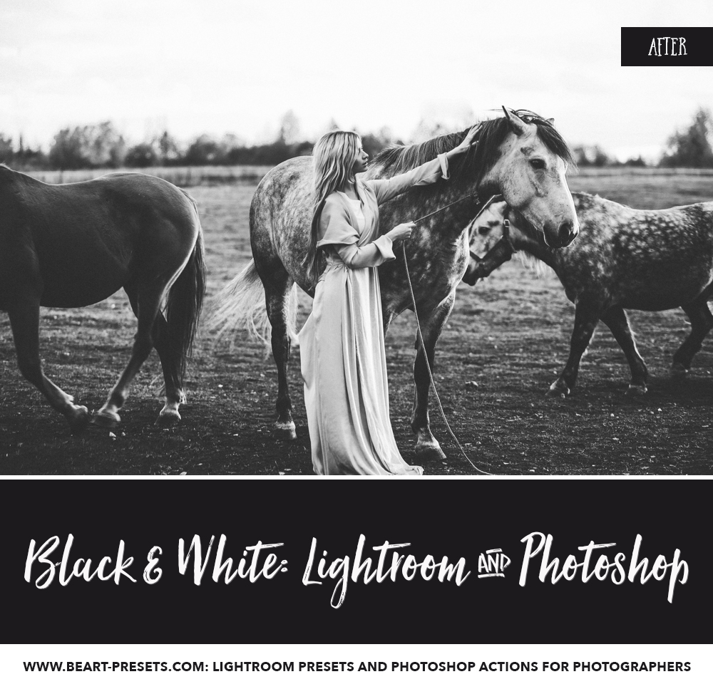 Black and white presets for Lightroom