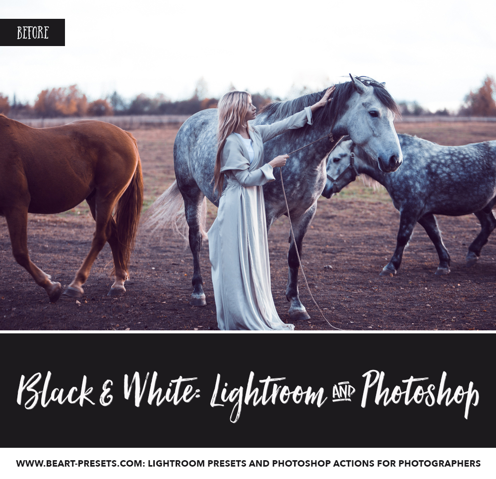 Black and white presets for Adobe Lightroom