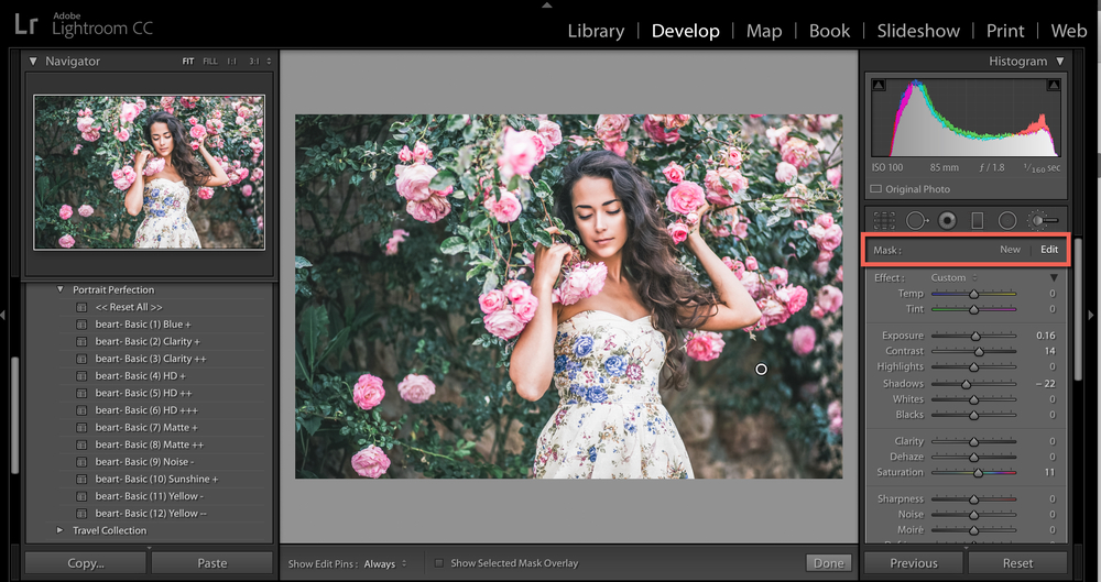 auto mask option for lightroom