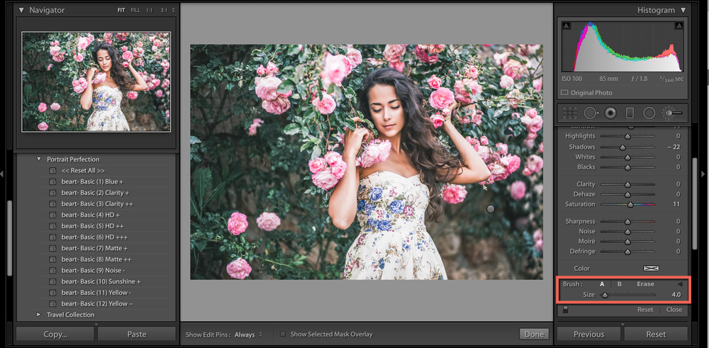 brush option for lightroom
