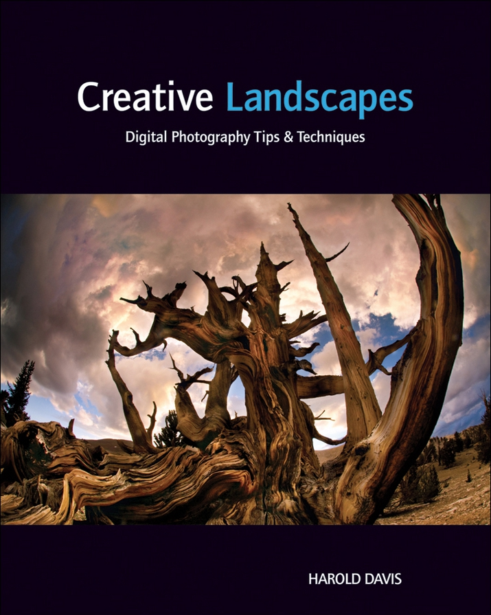 Creative Landscapes: Digital Photography Tips and Techniques book