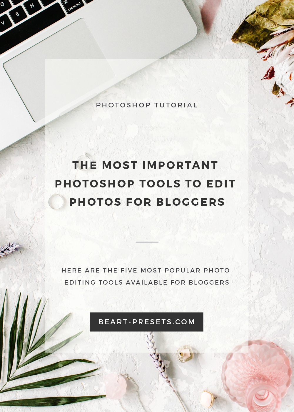 Here are the five most popular photo editing tools available for bloggers