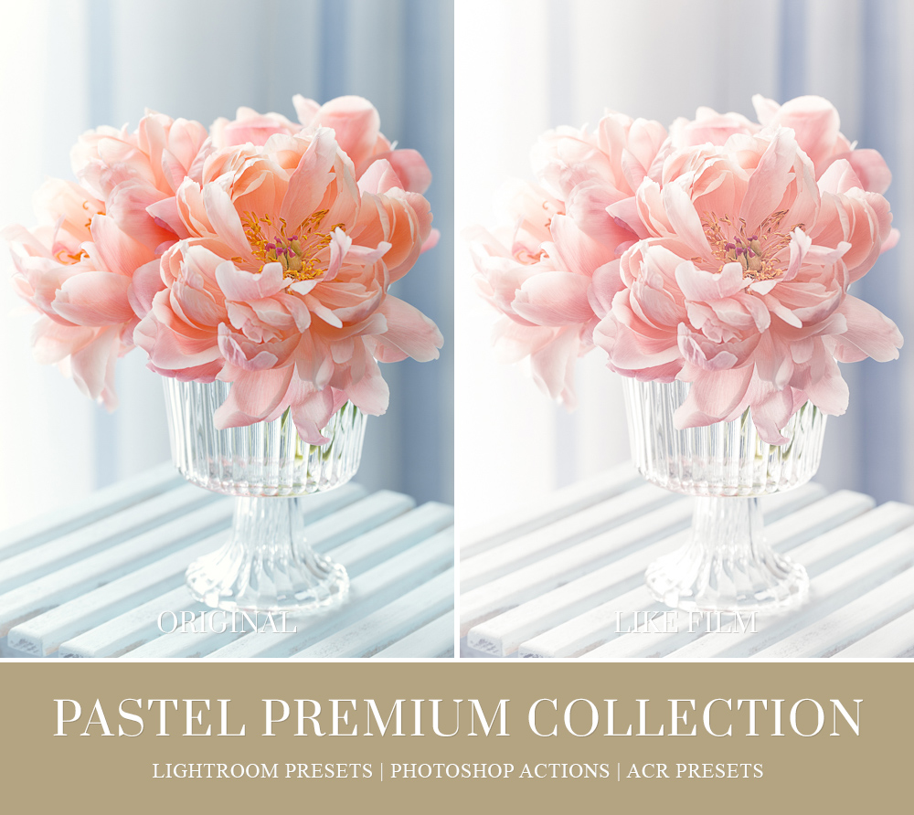 soft pastel color for floral photography