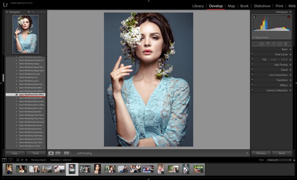 Lightroom Catalog in Adobe Photoshop Lightroom.png