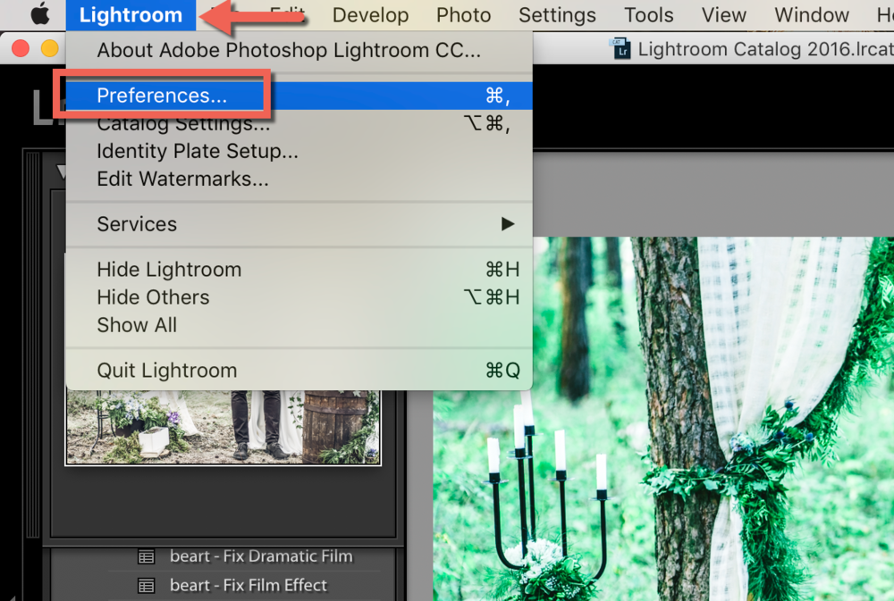 preferences in lightroom