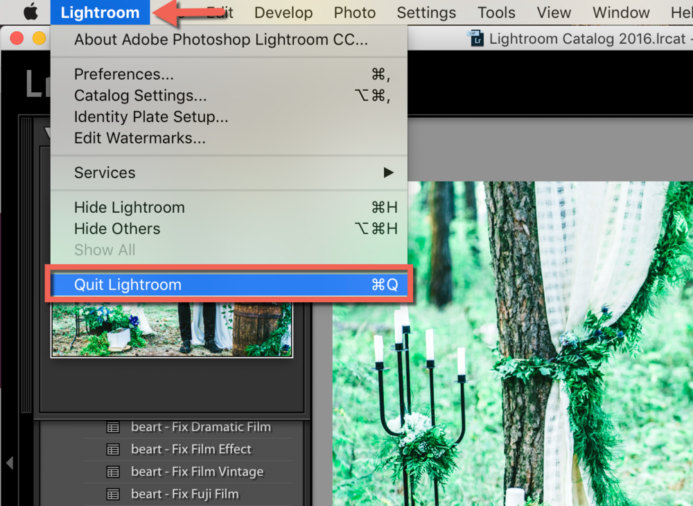 restart your lightroom software