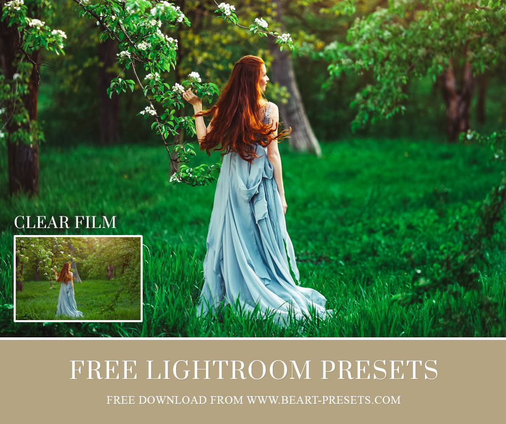 free presets download
