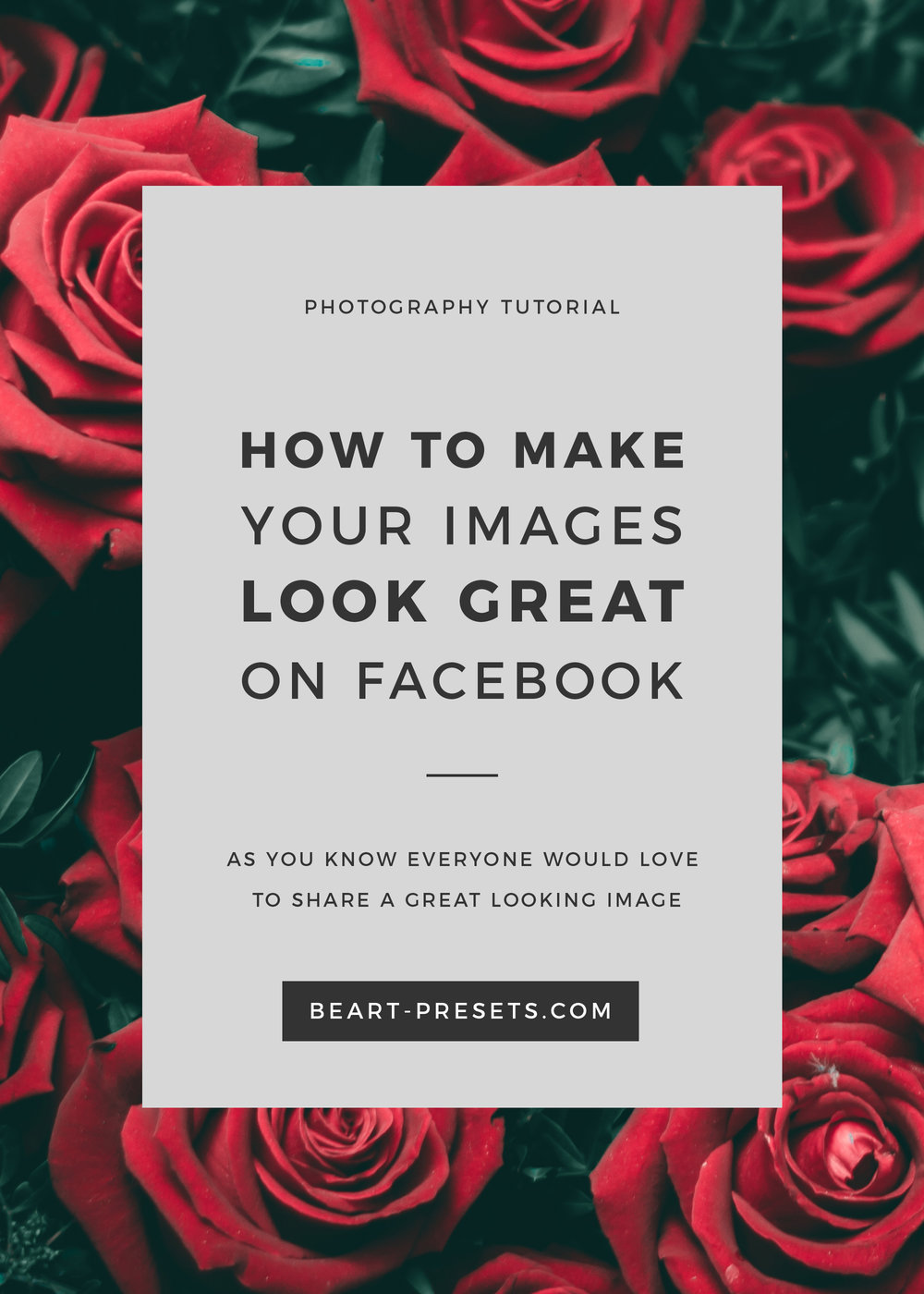MAKE YOUR IMAGES LOOK GREAT