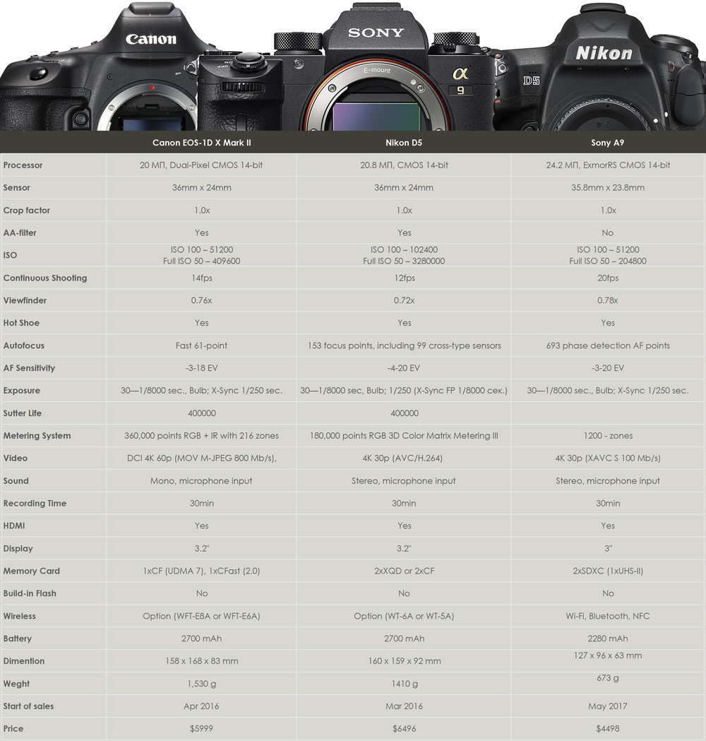 nikon vs sony vs canon cameras