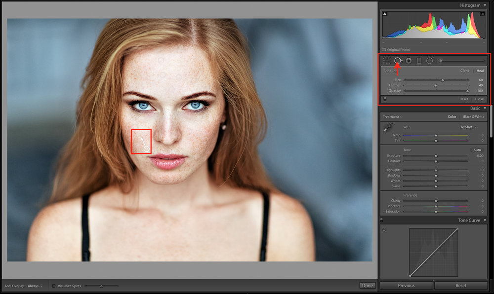 spot removal tool in Lightroom