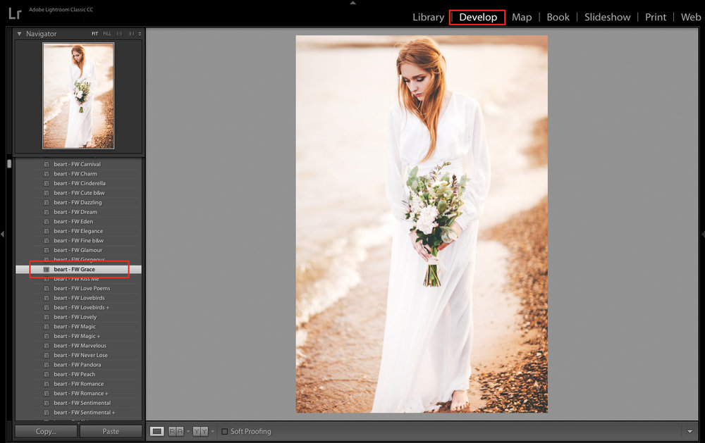 apply lightroom preset to the image