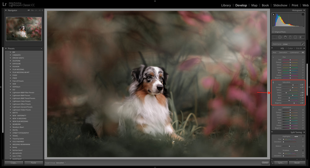 saturation in lightroom